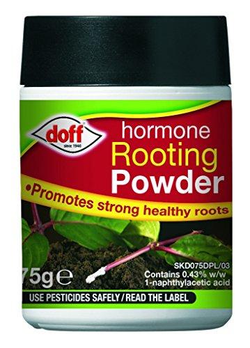 doff-rooting-powder-75g
