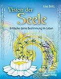 Vision der Seele: Entdecke deine Bestimmung im Leben - Lisa Biritz