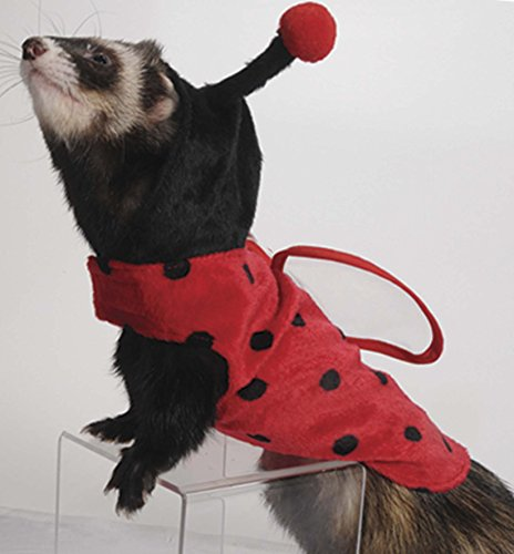Marshall Pet Products Marienkäfer Kostüm für -