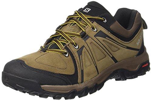 SalomonEvasion LTR - Scarpe da trekking e da passeggiata Uomo Marrone (Braun (Absolute  Brown-X/Burro/Ray))