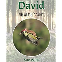 David: the weasel's story (U.K. Mammals Book 4)