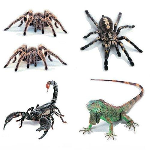 Preisvergleich Produktbild Uniqstore 5pcs Auto Aufkleber 3D Spinne Eidechse Skorpion Aufkleber