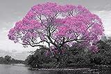 Tree - Blossom - Poster - Bäume Blumen Pflanzen - Poster Plakat Druck - Größe 91,5x61cm + 1 Ü-Poster der Grösse 61x91,5cm