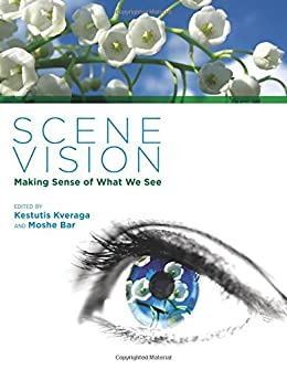 Scene Vision: Making Sense of What We See (The MIT Press
