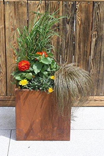 Jardinière/bac à fleurs en patine directement au beflanzen 38 x 38 x 38 cm
