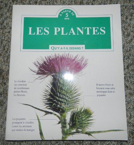 Les Plantes Qu'y A-t-il Dedans