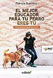 El mejor educador para tu perro eres tú : consejoscaninos.com