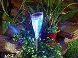 Solar Tulpe 3 x 3er Set Solargartenleuchte Solarwegeleuchte Edelstahl und hochwertigem Kunststoff, je 2 LEDs 1 x mit Farbwechsler 1 x weißes Dauerlicht Gartendekoration