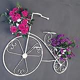 Jren-zk Wand-Fahrrad Regal, Dekoration Eisen Kunst Fenster Platz Haushalt Kommerziellen Wohnzimmer Shop Chlorophytum Topfpflanzen 64 * 10 * 62,5 cm (Farbe : B)
