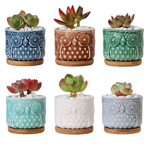 ComSaf Vaso per Pianta Grassa Vaso di Piante con Vassoio di bambù Pancromatico 6.6CM Ceramica Gufo Set di 6, Fioriere di Cactus Contenitori Vasi di Fiori Decorativo del Desktop Davanzale Bonsai