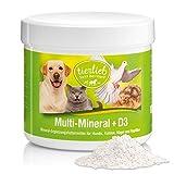 tierlieb Sanct Bernhard Multi-Mineral + D3 Ergänzungsfuttermittel für Hunde, Katzen, Vögel und Reptilien, Inhalt 200 g Pulver