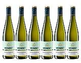 Weinbiet Manufaktur eG  Mußbacher Eselshaut Gewürztraminer 2017/2018 Lieblich Weißwein (6 x 0.75 l)