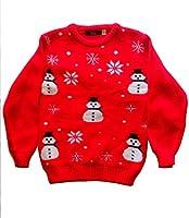 Pull Garçons Filles Rudolph pingouin Noël gai