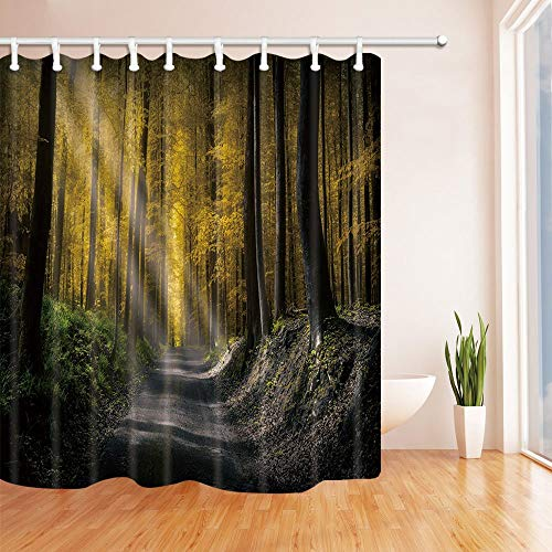 gwegvhvg Forest Bath Curtain SunPasses Through Yellow Leaves and Shine to  Path on Forest Polyester Fabric Waterproof Shower Curtain for Bath  180X180CM