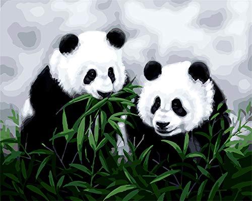 DIY Ölgemälde, Malen nach Zahlen Kit für Kinder Erwachsene Anfänger 40,6x 50,8cm-Cute Panda Gras essen, Zeichnen mit Pinsel Weihnachten Decor Dekorationen Geschenke Without Frame