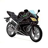 Yamaha YZF-R125 08-13 Vollverkleidungsset (20 Stück) Schwarz / Schwarz