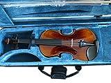 4/4 Geige Vogelaugen - Flammung im Luxuskoffer