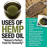 Shudh Desi Pure Hemp Seed Oil Cold Press...