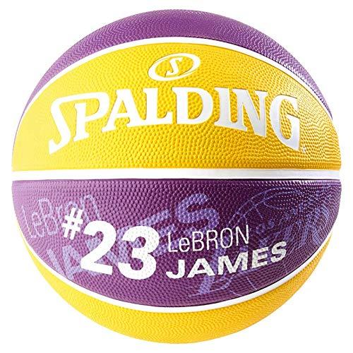 Spalding NBA Player Lebron James SZ.5 83-863Z Basketballs