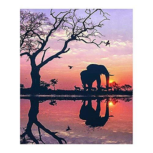 OOFAYWFD Pintura De Diamante, 5D Mural De Elefantes con Incrustaciones De Bricolaje...