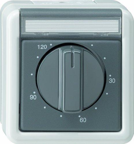 Gira 032130 Zeitschalter 120 Minuten Wassergeschützt Aufputz, grau -