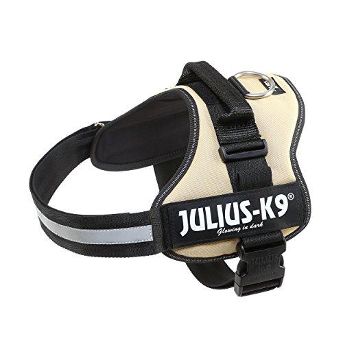 Julius k9 Talla 2