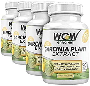 Wow Garcinia Cambogia - 800 mg - 90 Veg Capsules (Pack of 4)
