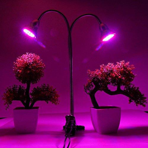 JAYLONG 60W 76 (38 x 2) LED-Klipp auf Anlage wachsen helle Lampe rote blaue Doppelköpfe mit 360 Grad-justierbarem flexiblem Gooseneck für Zimmerpflanzen Wasserkulturgarten-Gewächshaus
