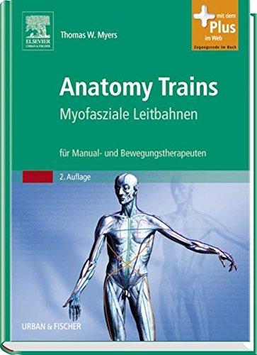 Zoom IMG-2 anatomy trains myofasziale leitbahnen f