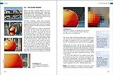 Grundkurs Grafik und Gestaltung: Fi...