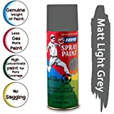 ABRO SP-89 Multipurpose Colour Spray Paint Can for Cars and Bikes (Matt Light Grey, 400ml)