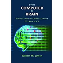 From Computer to Brain