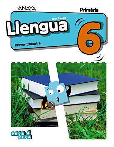 Llengua 6. (Peça a peça)
