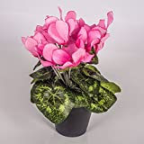 Kunstblume Alpenveilchen im Topf, 12 Blüten, rosa, 25 cm - Mini Kunstblumen / Dekoblumen klein - artplants