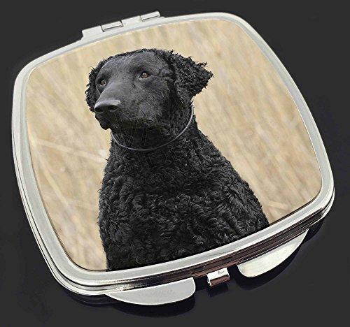 Curly Coat Retriever Hund Make-up Taschenspiegel Weihnachtsgeschenk (Retriever Curly Coat)