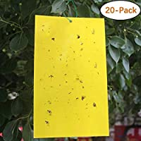 DAYONG 20-Pack Dual-Sided Yellow Sticky Traps for Flying Plant Insect 20 * 25CM - Sticky Traps for Fungus Gnat, Flies, Aphids, Leaf Miners, Whiteflies, Thrips and Other Flying Insects