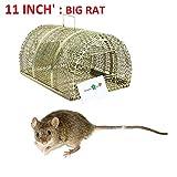 SHA™ Big Size Iron Trap / Cage / Catcher For Multiple Rat /