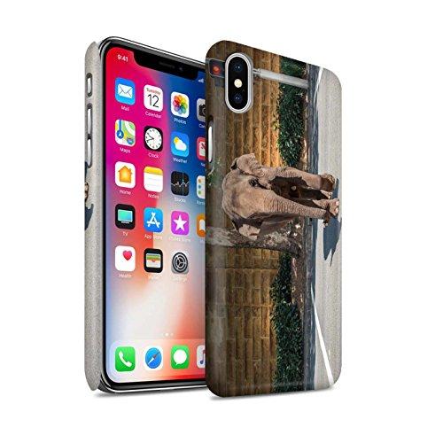 STUFF4 Matte Snap-On Hülle / Case für Apple iPhone X/10 / Große Flucht Muster / Vorstellen Kollektion Jaywalking