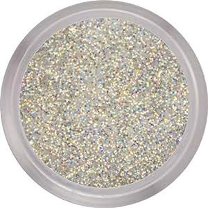 Nail Perfection - Nail Perfection 3,5G Poudre Acrylique Stardust (Paillettes Holographiques Argentées)