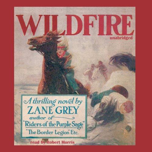 Wildfire  Audiolibri