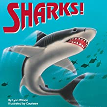 Sharks! (All Aboard Book)