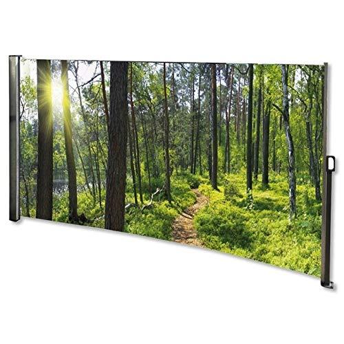 MACOShopde by MACO Möbel Seitenmarkise mit Foto Wald Links- Windschutz/Sichtschutz/Seitenrollo 160 x 300 cm