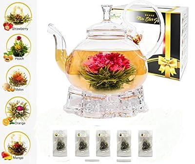 ECONAVA Tea Coffret Cadeau Five Star - Théière en Verre 750 ML avec infuseur Filtre, Chauffe-Verre et 5 Boules de thé Vert Floraison