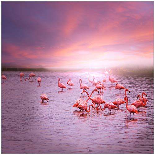 Wallario Magnet für Kühlschrank/Geschirrspüler, magnetisch haftende Folie - 60 x 60 cm, Motiv: Rosa Flamingos bei Sonnenuntergang -