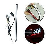 LED Nebelscheinwerfer Auto Nebel-Glühbirne Daytime running light Flashing lights mit Durchflussfunktion Strobflashing 30 CM