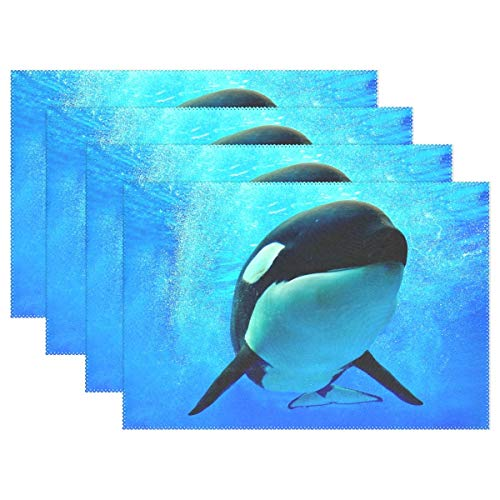 GOODSTHING Tischset, Killer Whale Underwater Placemat Table Mat 12