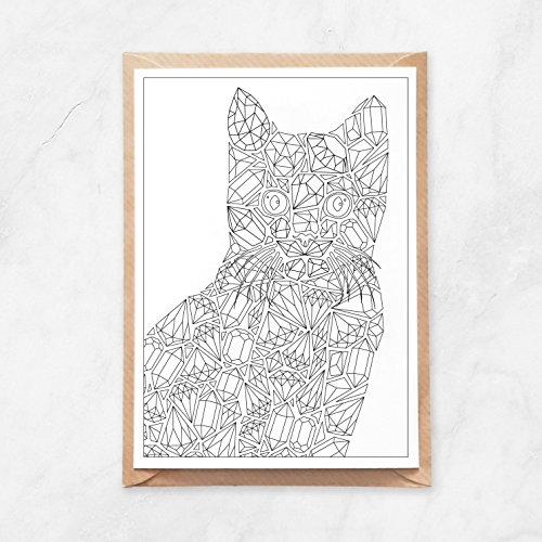 5 Stück, Postkarte zum Ausmalen, DIY Katze aus Diamanten, Crazy Cat Lady Grußkarte, A6