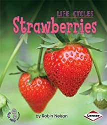 Strawberries (First Step Nonfiction (Paperback)) by Robin Nelson (2008-09-01)