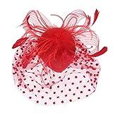 Hochzeit Brautvogelkäfig-Mesh Gesichtsschleier Feder Fascinator Haarspange Rot