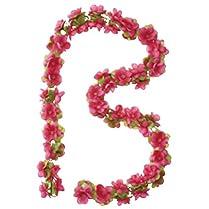 Basil Guirnalda floral 4